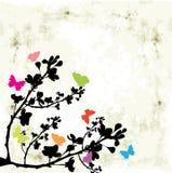 Árbol y mariposa Imagen de archivo libre de regalías