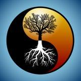 Árbol y sus raíces en el símbolo de yang del yin Imagenes de archivo
