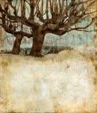 Árboles de sauce en un fondo del grunge Imagen de archivo libre de regalías