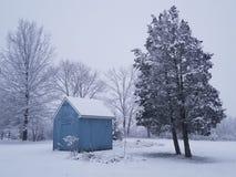 ?rboles en invierno fotos de archivo libres de regalías