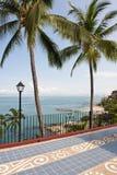 Árboles y patio de palmas por el océano Imágenes de archivo libres de regalías