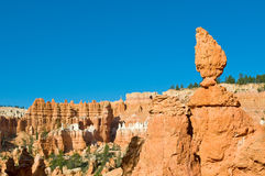 RBryce Canyon, Utah, USA Royalty Free Stock Photography