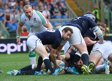 RBS 6 NATIONS 2014 - ITALY vs SCOTLAND; GREIG LAIDLAW Royalty Free Stock Image
