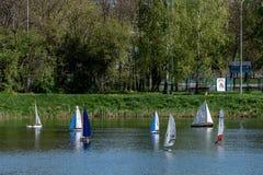 RC标度航行在竞争的模型船 库存图片