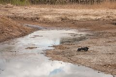 RC car crowler Vaterra Twin Hammers moves through the swamp and dry grass stock images