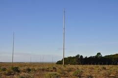 RCA Marine Coast Station Antenna Farm, Punkt Reyes Lizenzfreie Stockfotos