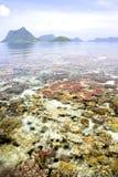 Récif coralien et îles Photos stock