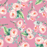 Räcka den utdragna vattenfärgen den blom- sömlösa modellen med mjuka rosa rosor in på den rosa bakgrunden Arkivfoto