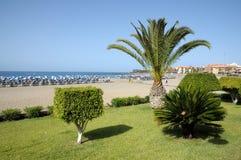 Rücksortierung Los Cristianos, Tenerife Spanien Lizenzfreie Stockfotos