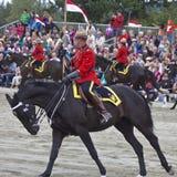 RCMP音乐乘驾展示2013年 免版税库存照片
