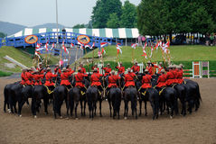 RCMP. Pictue of the famous RCMP Royal Canadian Mounted Police Royalty Free Stock Photography