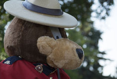 RCMP Bear Stock Photo