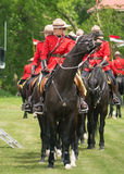 RCMP on Horse. An female Royal Canadian Mounted Police officer on her horse getting ready for the RCMP musical ride in  Chesterville, Ontario, CAnada Stock Image