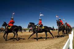 RCMP Musical Ride Review Stock Image