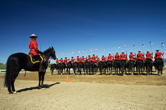 RCMP Musical Ride Review Royalty Free Stock Images