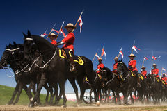 RCMP Musical Ride Review Royalty Free Stock Photo