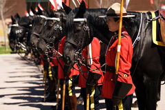 RCMP Musical Ride Review Stock Images