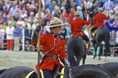 RCMP Musical Ride Show 2013. In Saanich, British Columbia Royalty Free Stock Photo