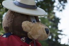 RCMP niedźwiedź Zdjęcie Stock