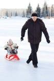 Récréation de l'hiver Photos stock