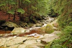 Rcreek de Mumlava en montagnes géantes Photographie stock