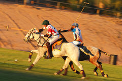 3rd Annual Scottsdale Ferrari Maserati Polo Championships Royalty Free Stock Images
