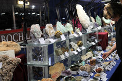23rd Annual Toronto Jem and Mineral Show Royalty Free Stock Image