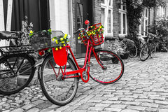 Röd cykel för Retro tappning på kullerstengatan i den gamla staden Fotografering för Bildbyråer