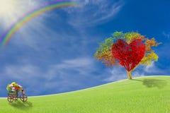 Röd hjärta med det stora trädet på äng Arkivbilder