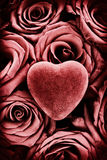 Röd hjärta på röda rosor - tappning Arkivfoton