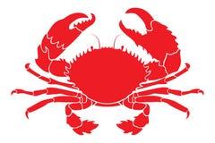 Röd krabba Arkivbilder
