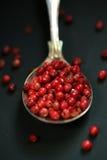 Röd peppar i en sked Royaltyfria Bilder