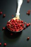 Röd peppar i en sked Royaltyfri Fotografi