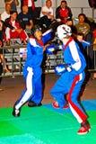 3rd światu kickboxing mistrzostwo 2011 Zdjęcie Stock