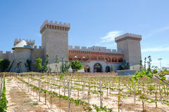 RD Wine Castle, Mui Ne, Vietnam Royalty Free Stock Photos