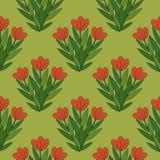 Röda blommor mönstrar Royaltyfri Foto