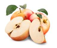 Röda gula Apple Royaltyfri Foto