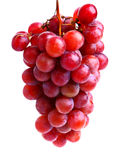 röda läckra druvor Arkivbild