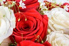 Röda och vita rosor som gifta sig buketten Royaltyfri Foto