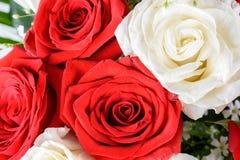 Röda och vita rosor som gifta sig buketten Royaltyfria Foton