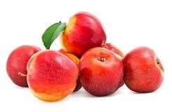 Röda äpplen med det gröna bladet på vit Arkivfoto