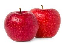 Röda äpplen med vattendroppar Royaltyfri Bild