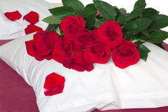 Röda rosor på kudden Royaltyfri Bild