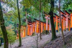 Röda Tori Gate på den Fushimi Inari relikskrintemplet i Kyoto, Japan Royaltyfria Bilder