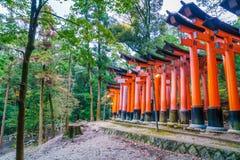 Röda Tori Gate på den Fushimi Inari relikskrintemplet i Kyoto, Japan Arkivbilder