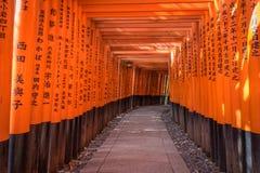 Röda Torii av den Fushimi Inari relikskrin, Kyoto, Japan Royaltyfri Bild