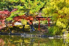 Röda Torii i trädgård Arkivbild