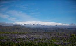 Rdalsjökull παγετώνας Mà ½ Στοκ φωτογραφίες με δικαίωμα ελεύθερης χρήσης