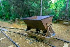 Rdzewieć resztki złociści ekstrakcyjni tramwaje z roślinami r przez mnie Wiktoria złocisty bateryjny Waikino, Nowa Zelandia Zdjęcie Royalty Free