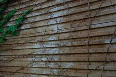 Rdzewiejący metalu drzwi tło metal tekstura stara rdzewiejąca stara metal powierzchnia Obraz Royalty Free